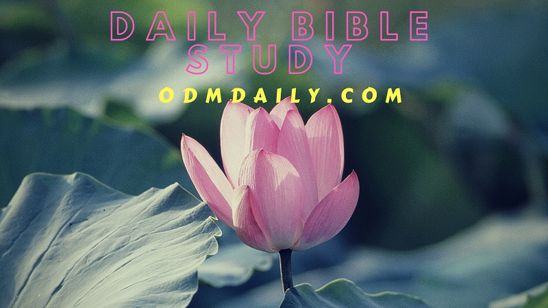 Daily Manna Devotional 26 October 2018